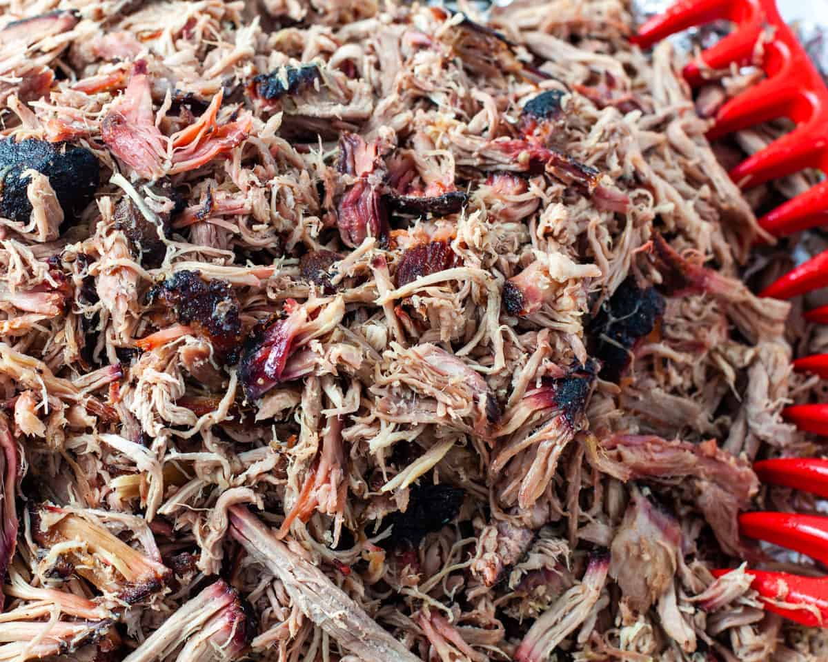 Shredded pulled pork on pan.