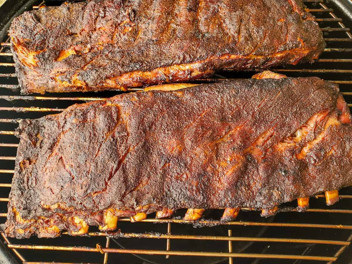 Ribs shown on the smoker after cooking with the meat pulling back slightly from the bones.