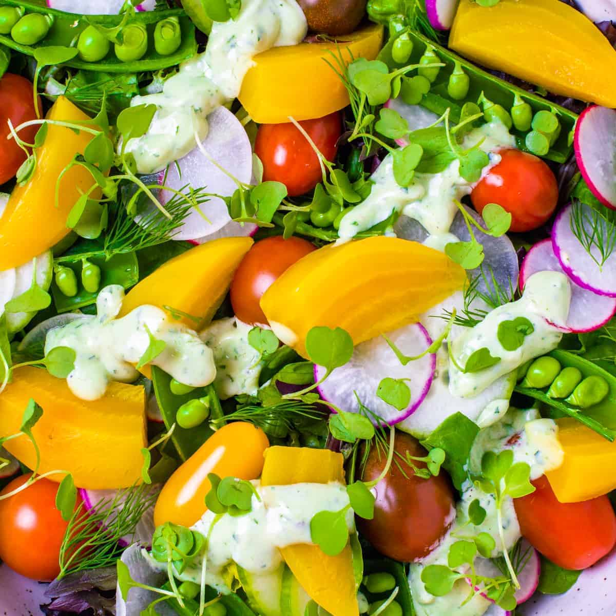 Close up picture of salad with roasted golden beets, radishes, heirloom tomatoes, sugar peas, and an avocado herb dressing.