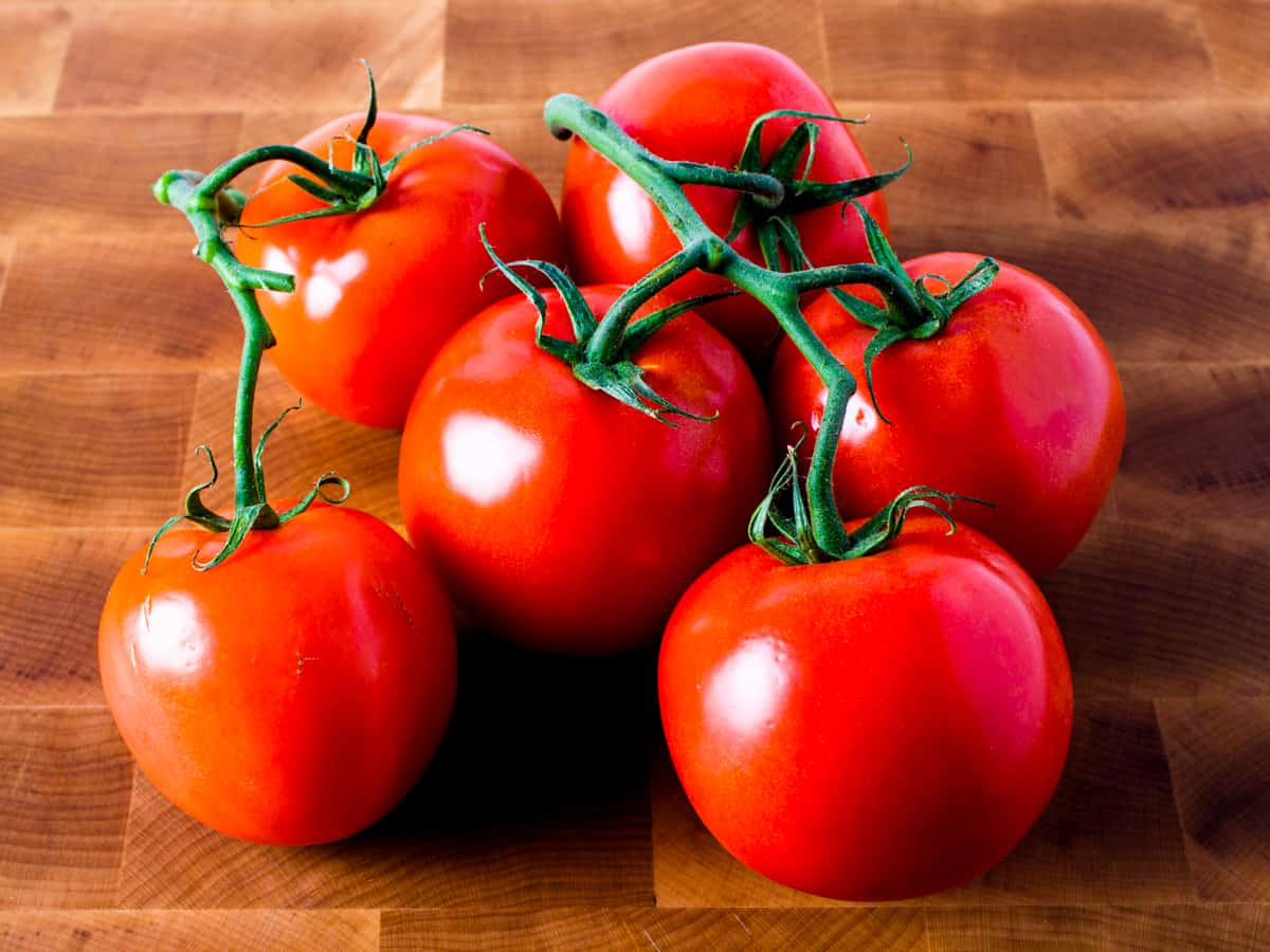 Close up image of fresh ripe tomatoes on the vine.