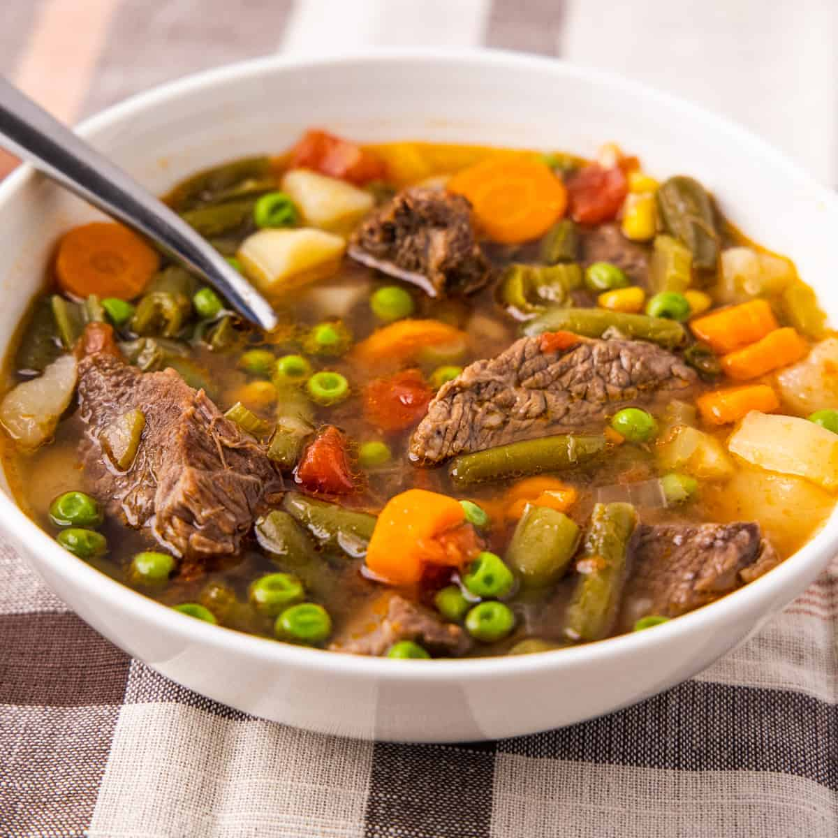 Side angle view of a bowl of vegetable beef soup served in a bowl on a plaid tablecloth.